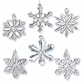 Glass Snowflake Ornaments - Set of 6 - Iridescent - Each One Is a Different Snowflake Pattern - Comes Boxed - 2.5 Inch