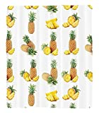 Chaoran 1 Fleece Blanket on Amazon Super Silky Soft All Season Super Plush Whole Half Pisces of Pineapple Picture Against Clear Background Image Print Fabric et Peru