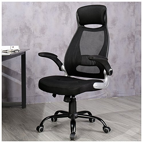 Veigar Ergonomic High Back Mesh Office Chair with Adjustable Armrest Computer Chair Desk Chair Task Chair Swivel Chair (Black)