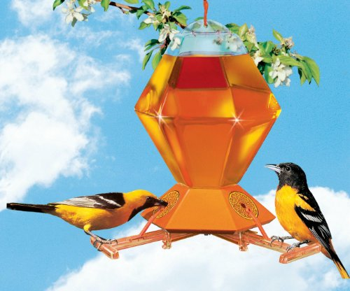 (Perky-Pet 36 oz Oriole Bird Feeder with Automatic Bee Guard)