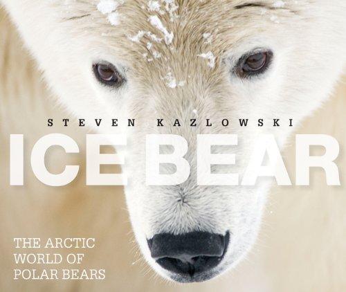 Download Ice Bear: The Arctic World of Polar Bears pdf