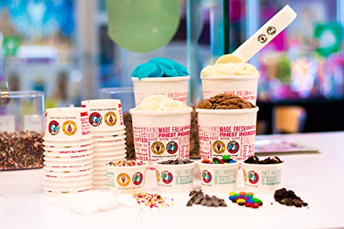 Ice Cream Party In Bag By Marble Slab Creamery (Kids Birthday Party, Small)