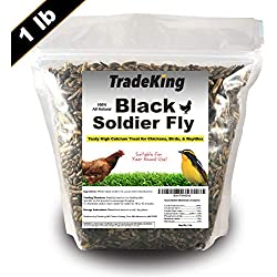 TradeKing Black Soldier Fly Larvae | Perfect Treat for Chickens, Wild Birds, Fish & Reptiles - High Energy, Delicious Pet Treat (1lb)