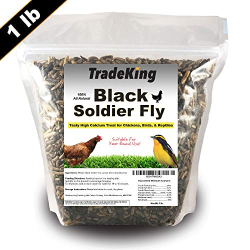 (TradeKing Black Soldier Fly Larvae | Perfect Treat for Chickens, Wild Birds, Fish & Reptiles - High Energy, Healthy Pet Treat Containing 50X More Calcium Than Other Feeder Insects (1lb))