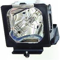 610 307 7925 Sanyo PLC-XU56 Projector Lamp