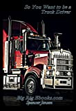 So You Want to be a Truck Driver (BigRig Training Book 1)