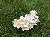 50 Pcs Flower blossom white color mulberry paper