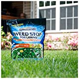 Spectracide Weed Stop For Lawns Plus Crabgrass