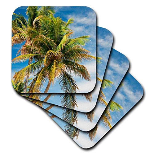 3dRose CST_89241_3 Coconut Palms, Bahia Honda Beach SP, Florida keys-US10 MPR0423-Maresa Pryor-Ceramic Tile Coasters, Set of 4