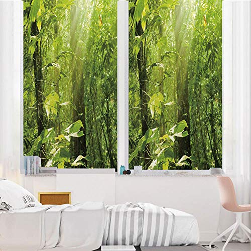 Nature 3D No Glue Static Decorative Privacy Window Films, Forest with Sunray Foliage Leaf Branches Woodland Eco Jungle Misty Picture,24
