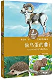 img - for The Beast Stealing Bird Eggs (Phonetic Edition) (Chinese Edition) book / textbook / text book