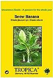 TROPICA - Snow Banana