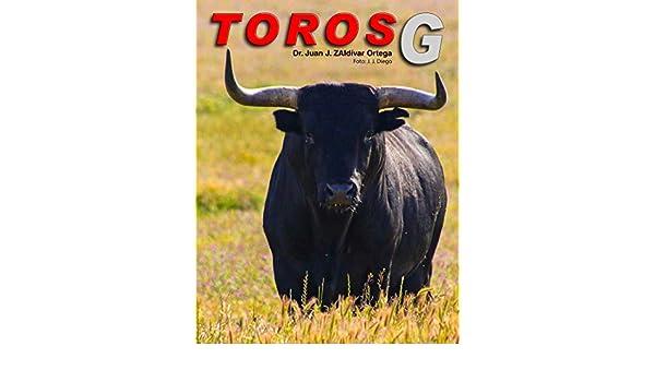 Amazon.com: Toros con la letra G (Toros bravos nº 7) (Spanish Edition) eBook: Juan José Zaldívar Ortega, Christian Efraín Martínez Castro: Kindle Store