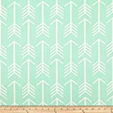 Premier Prints Arrow Mint Fabric By The Yard
