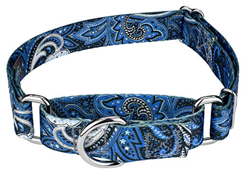 Country Brook Petz | Blue Paisley Martingale Dog Collar (Medium)