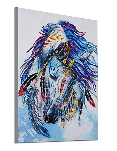 5d Diamond Painting Kits New Special Shaped Diamond Embroider DIY Kits Christmas Gifts for Kids Adults Paint by Number Kits Cross Stitch Craft Kit Painting by Diamonds - Horse (8042) (Diamond Shaped Frame)