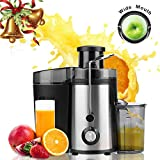 Juicer Juice Extractor High Speed for Fruit and Vegetables Dual Speed Setting Centrifugal Fruit Machine Powerful 350 Watt with Juice Jug, Premium Food Grade Stainless Steel