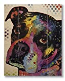 Dean Russo Young Boxer Printed on 11x14 Wood Pallet Slats Wall Art Sign Plaque Distressed Design