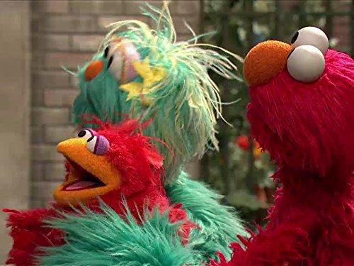 Elmo Finds A Baby Bird. Episode -