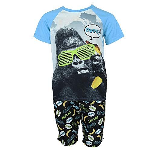 Rene Rofe Boy's Raglan Sleeve Tee and Shorts Pajama Set, Medium 8/10, -