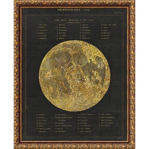アマニアートAstronomicalチャートI ( Moon ) by Wild Apple Portfolio DSW3926482  ブロンズ(antique bronze) B06Y3RD3V7