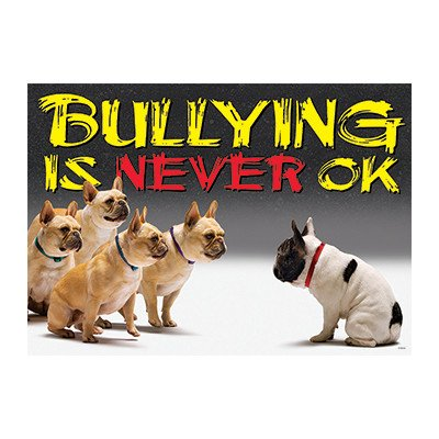 - Bullying is Never Ok Argus Large Poster [Set of 3]