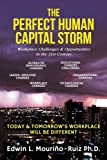 img - for The Perfect Human Capital Storm: Workplace Challenges & Opportunities in the 21st Century book / textbook / text book