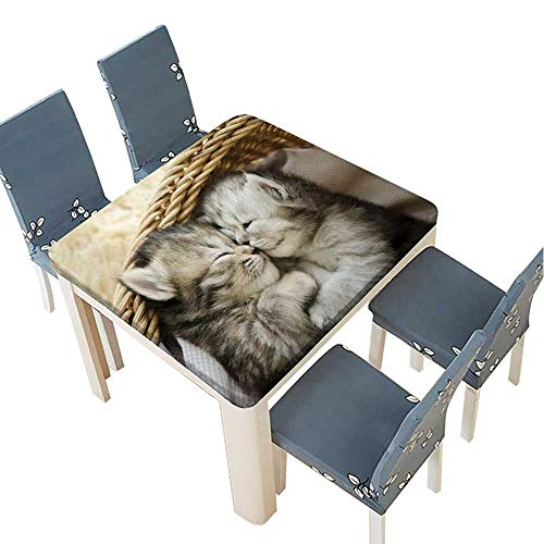 lyester Fabric Tablecloth Cute Tabby Kittens Sleeping and Hugging in a Basket Summer & Outdoor Picnics 33.5 x 33.5 INCH (Elastic Edge) ()