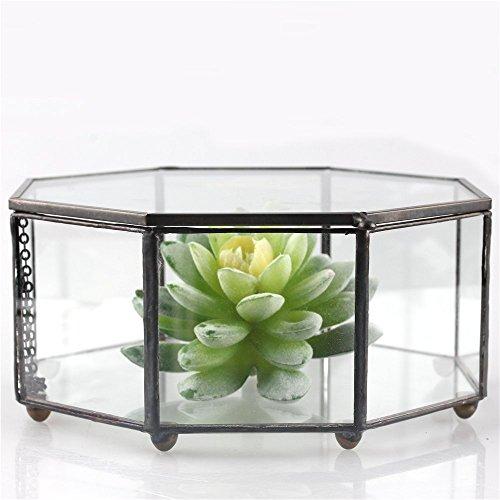 Artistique-moderne-en-verre-transparent-fermeture-eight-side-Prism-gomtrique-Plante-pour-terrarium-Jardinire-Succulente-Fougre-Reptile-avec-couvercle-basculant-Mousse-15-cm-x-15-cm-x-75-x-m-plat-idal-