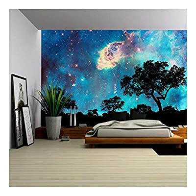 Unbelievable Visual, Created By a Professional Artist, Night Landscape with Silhouette of Trees and Starry Night