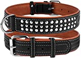 CollarDirect Studded Dog Collar Leather Pet Collars for Dogs Small Medium Large Puppy Soft Padded Brown Black