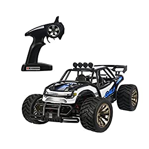 iTavah Electric Rc Car, 1:16 50M 2WD 2.4Ghz Remote Control Racing Buggy Cars, High Speed RC Off Road Monster Truck (Blue)