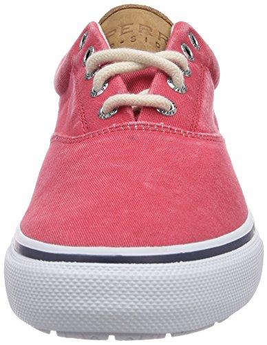 Sperry STRIPER CVO, Herren Sneakers Rot (Red)