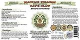 Cat's Claw Alcohol-Free Liquid Extract, Cat's