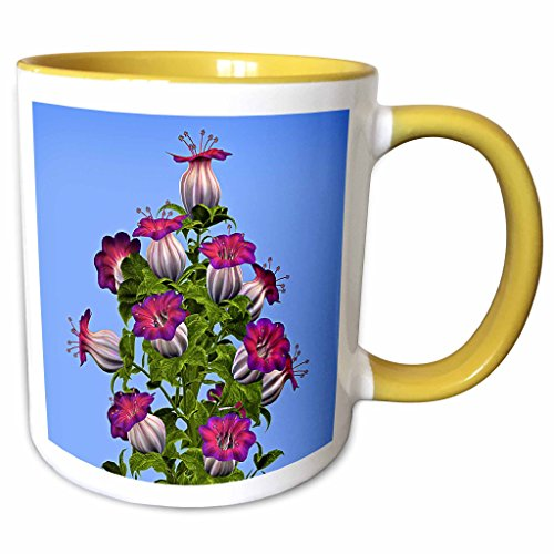 3dRose Boehm Graphics Flower - Mauve and White Bell Flowers - 11oz Two-Tone Yellow Mug (mug_127557_8)