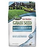 Lawn Grasses Review and Comparison