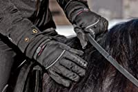 Mountain Horse Performance Glove from En...