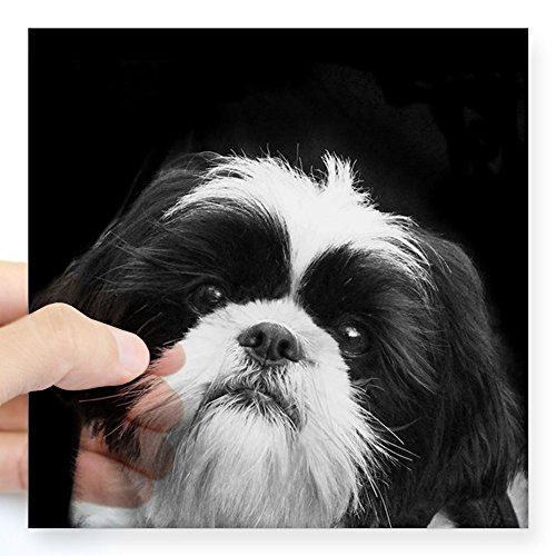 shih tzu decal - 9