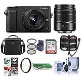 Panasonic Lumix DMC-GX85 Mirrorless Camera Black with Lumix G Vario 12-32mm f/3.5-5.6 & 45-150mm F4.0-5.6 Lenses - Bundle With Camera Case, 32GB SDHC Card, 52mm Filter Kit, PC Software, And More