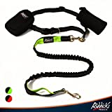 Riddick's Hands Free One & Two Dog Leashes for Running, Walking, Hiking, Training, Premium Dual-Handle 4ft Bungee Leash, Reflective Stitching, Adjustable Waist Belt, Accessories (Single Leash Only)