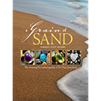 A Grain of Sand: Nature's Secret Wonder book cover