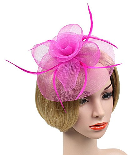 Pink Hat Pin - Urban CoCo Women's Vintage Flower Feather Mesh Net Fascinator Hair Clip Hat for Party Wedding (Rose)