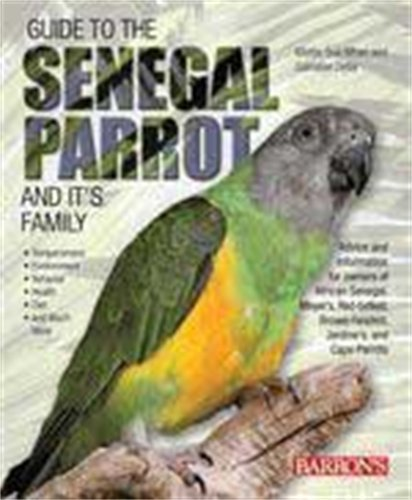 Guide to the Senegal Parrot and Its - Senegal Parrot