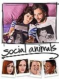DVD : Social Animals