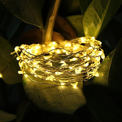 Jennyfly Waterproof Decorative Lights 33 ft with 100 LEDs,Wa