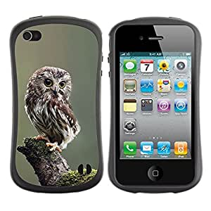 Paccase / Suave TPU GEL Caso Carcasa de Protección Funda para - owl baby cute feathers blurry nature - Apple Iphone 4 / 4S