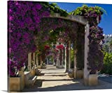 Scott T. Smith Gallery-Wrapped Canvas entitled France, Corsica, Flowers In Bloom On Arbors Above Walkway At Place De Gaulle, Ajaccio