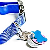 Tagabiner The New Pet Tag Holder, Secure and
