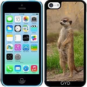 Funda para Iphone 5c - Meerkat by WonderfulDreamPicture