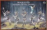 Sisters of the Thorn Wood Elves Warhammer Games Workshop